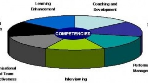 An Introduction to the Lominger Competencies