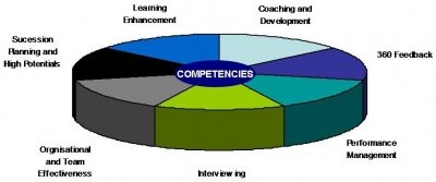Lominger Competencies
